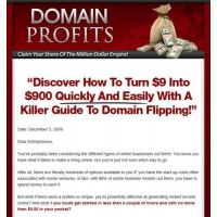 Turnkey Domain Profits Website Script & eBook