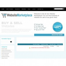 Website Auction Marketplace